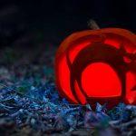 Awesome Cat Halloween Jack O Lantern